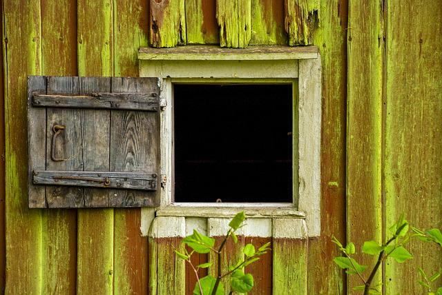 Window, Old Wood, Window Door, Summer, Gap, Green Algae