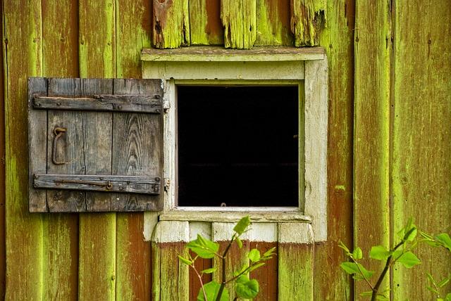 Window, Old Wood, Window Door, Summer, Gap, Green Algae