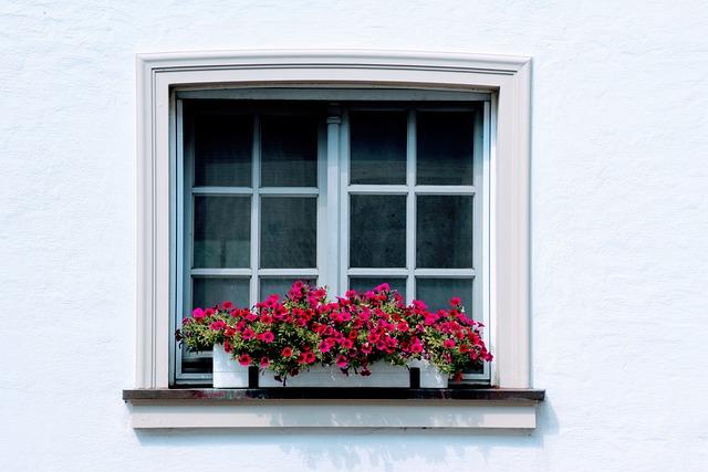 Window, Flowers, Flower Box, Shutter, Deco, House