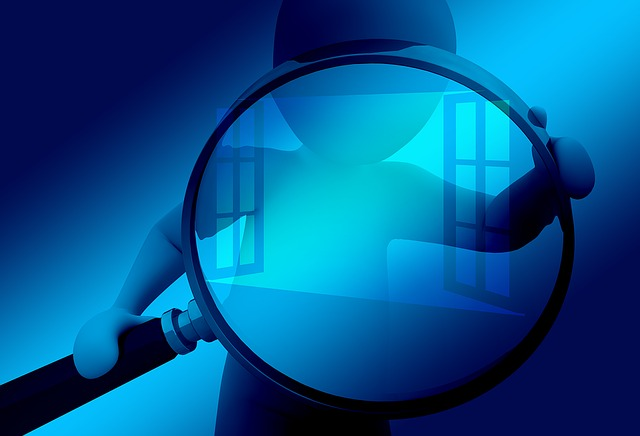 Window, Hand, Magnifying Glass, Search, Control