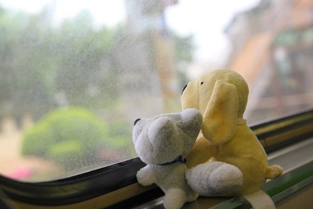 Travel, Train, Cuteness, Toys, Window
