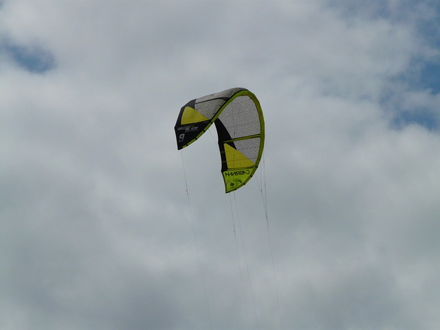 Kite, Windscreen, Screen, Dragons, Kite Surfing, Sport