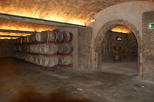 Wine Cellar, Wine, Spain, Wine Barrels