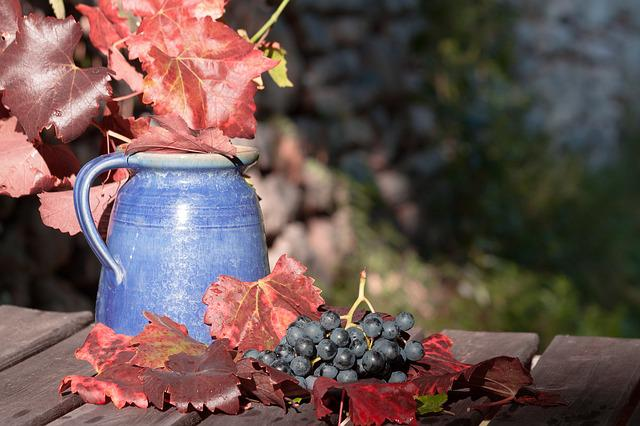 Wine, Grape, Leaf, Wine Harvest, Plant, Autumn, Vase