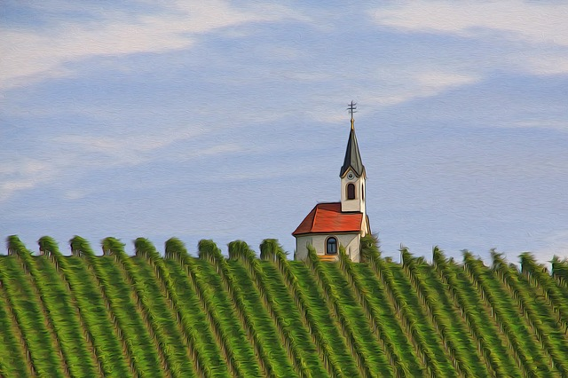 Chapel, Vineyard, Nature, Winegrowing
