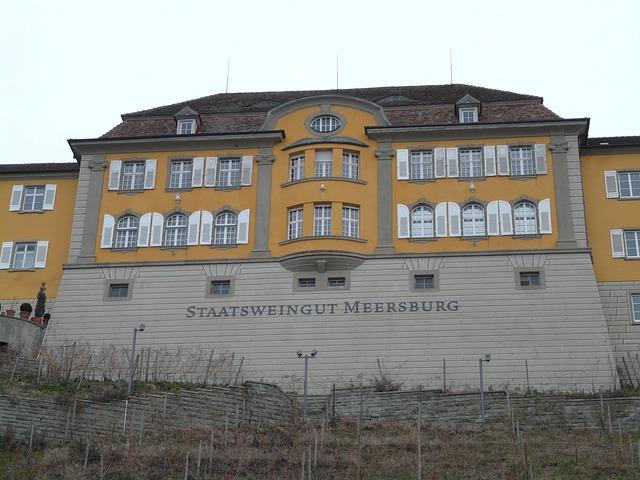 Meersburg, State Winery, Winery, Vineyard, Building