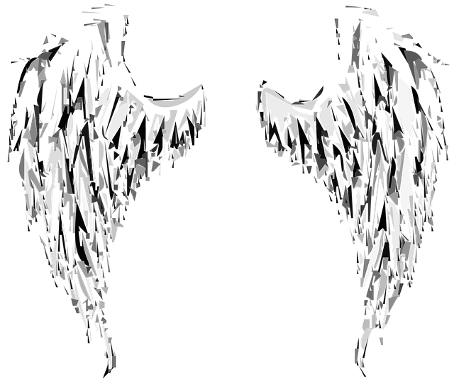 Angel, Wings, Angel Wings, Heaven, Fantasy, Feathers