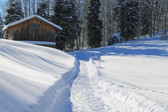 Winter, Hut, Snow, Away, Forest, Sauunt, Landscape