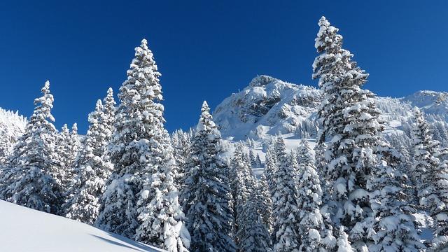 Runners Head, Winter, Backcountry Skiiing