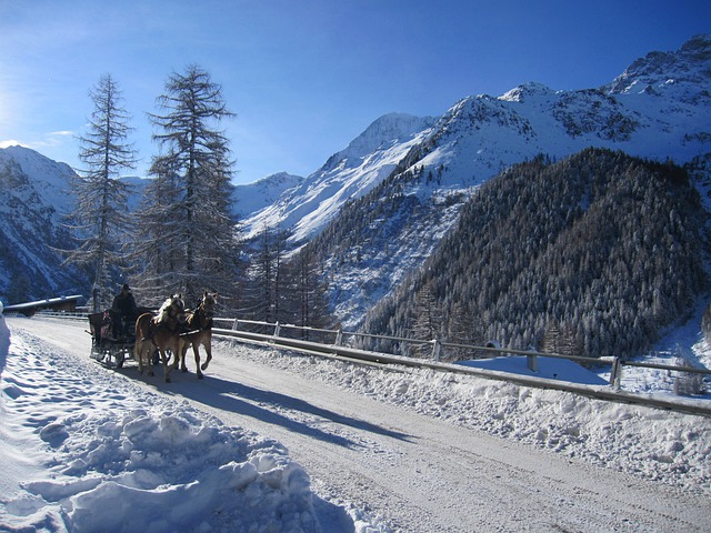 Solda, Winter, Snow, Ortler, Carriage Rides, Coach
