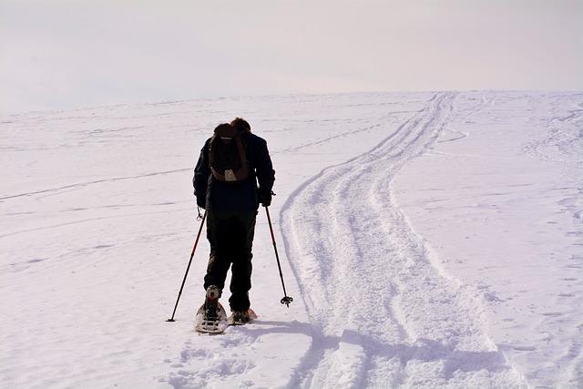 Solitude, Fatigue, Ascent, Snow, Winter, Cold, Ice