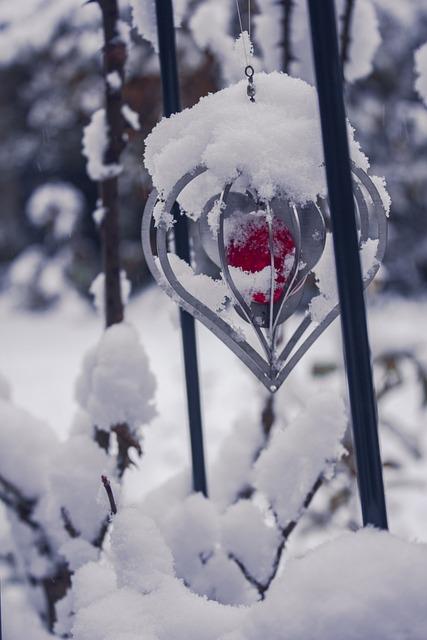 Snow, Winter, Cold, Snowfall, Snow-covered, Christmas