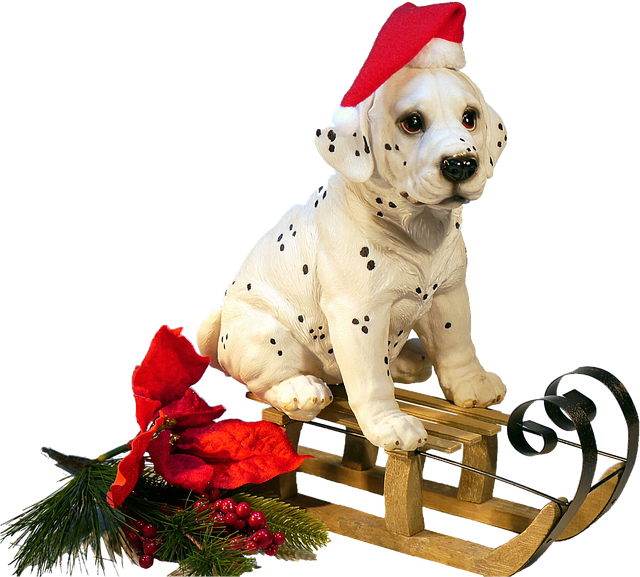 Dog On Sledge, Christmas, Winter