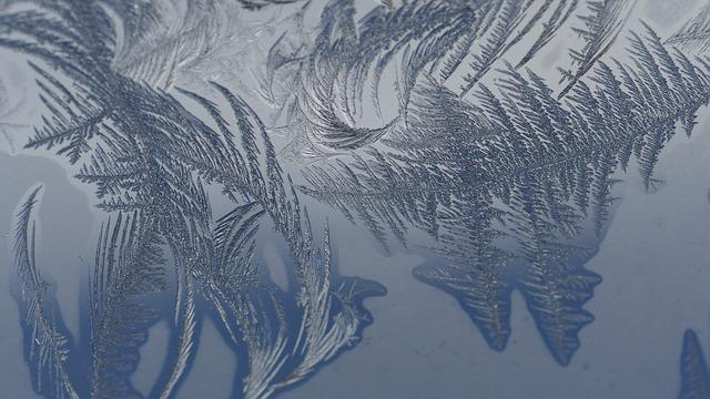 Cold, Frost, Macro Photography, Winter