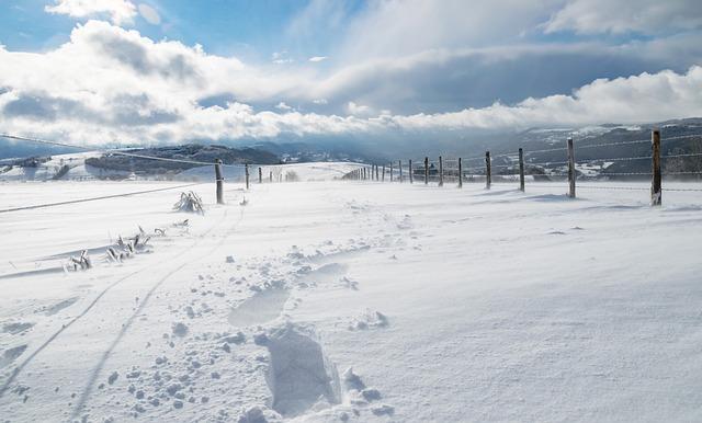 Winter, Snow, Nature, Cold, Frozen