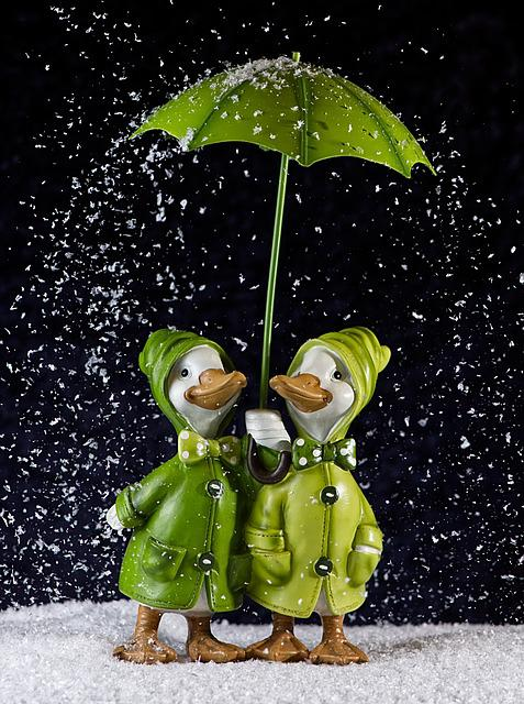 Geese, Pair, Snow, Winter, Screen, Figures, Funny