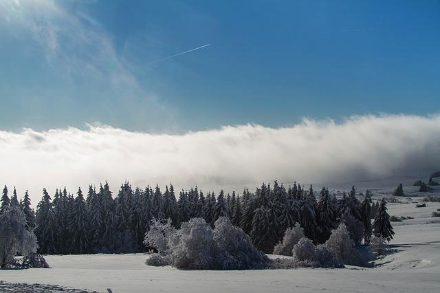 Winter, Snow, Wintry, Hochrhoen, Wasserkuppe