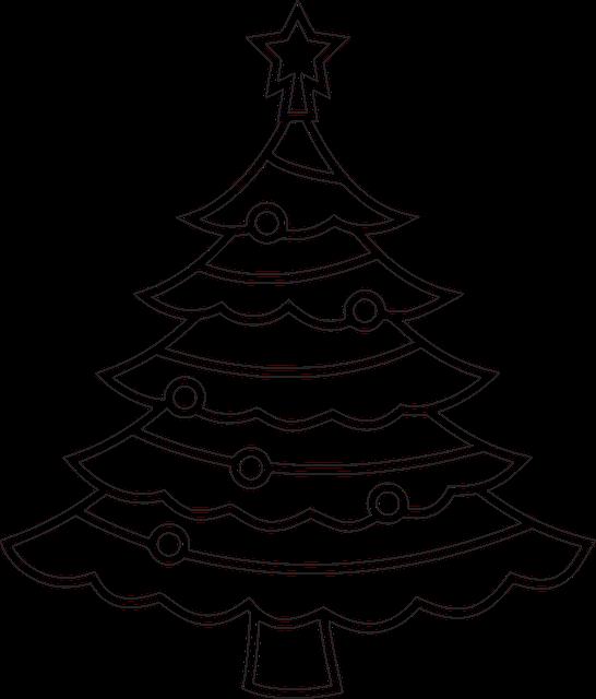 Free Photo Winter Holiday Christmas Tree Xmas Christmas Tree Max Pixel
