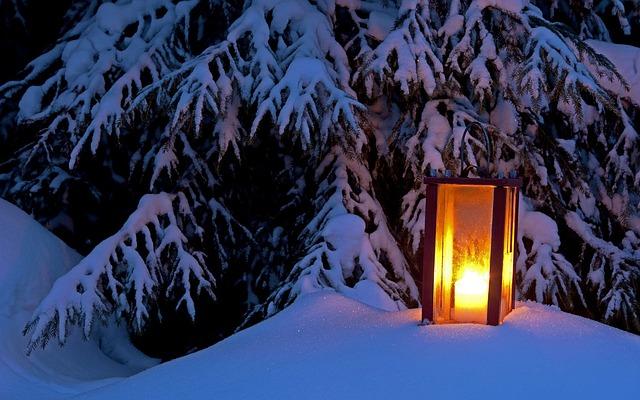 Season, Ice, Winter, Light, Frost