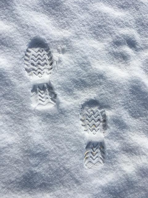 Snow, Footprints, Winter, Nature, Season, Weather, Ice