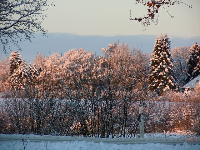 Wintry, Winter, Winter Mood, Winter Light, Winter Dream