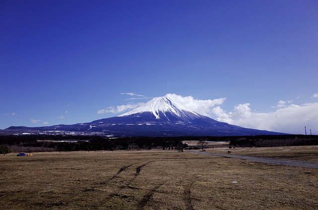Mt Fuji, Winter, Foot Cum I Et Al