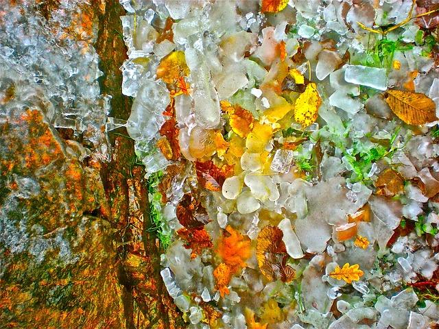 Natural Art, Ice-art, Ice, Frozen Leaves, Winter