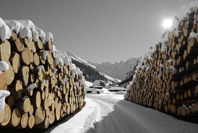 Wood, Snow, Samnaun, Nature, Sun, Winter, Wintry
