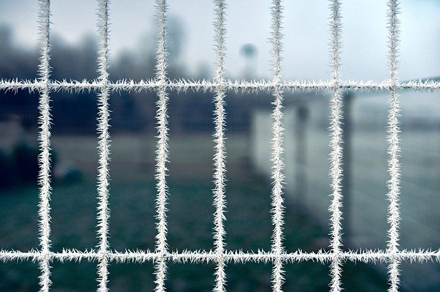 Iron, Steel, Fence, Network, Pattern, Winter, Cold, Ice
