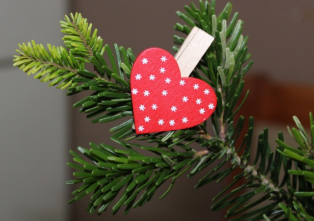 Heart, Winter, Sprig, Valentine's Day, Red, Symbol
