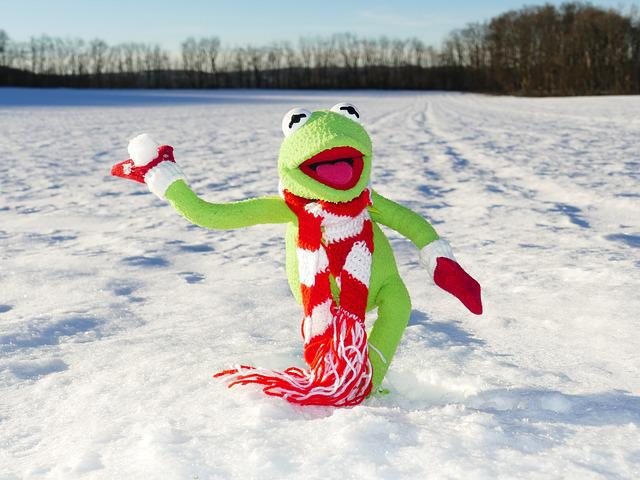 Kermit, Frog, Snow Ball, Throw, Snow, Winter, Cold, Fun