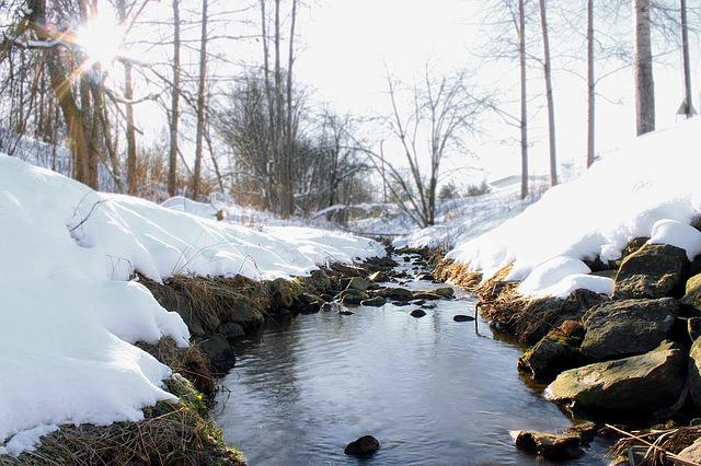 Winter, Day, The Creek, Forest, Snow, Sun, Landscape