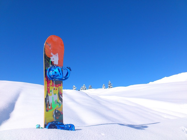 Snowboard, Winter, Winter Sports, Sport, Snow, Cold