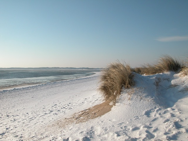 Winter, North Sea, Sylt, Beach, Sun, Germany