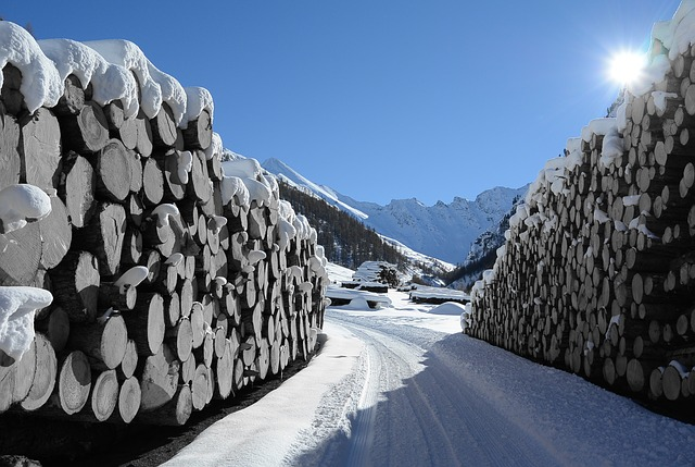 Winter, Sun, Wood, Holzstapel, Fast, Landscape, Sky