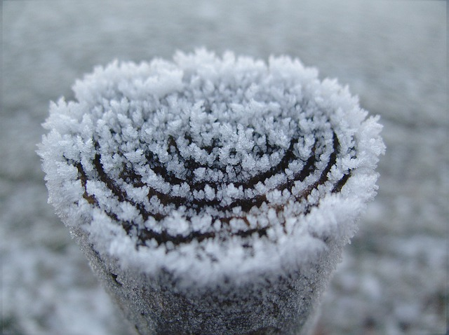 Winter, White, Cold, Snow, Wintry, Snow Magic, Crystal