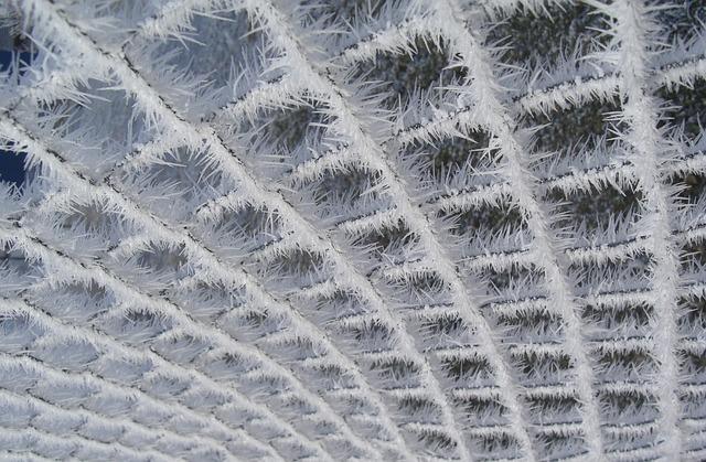 Hoarfrost, Wire Mesh, Fence, Wintry, Frozen