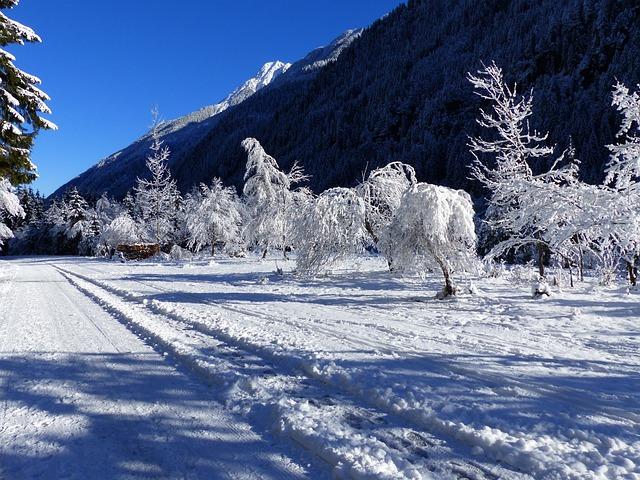 Snow, Ripe, Wintry, Nature