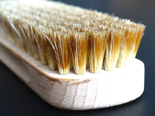 Brush, Bristles, Hand Brush, Clean, Wipe, Scrub, Brown