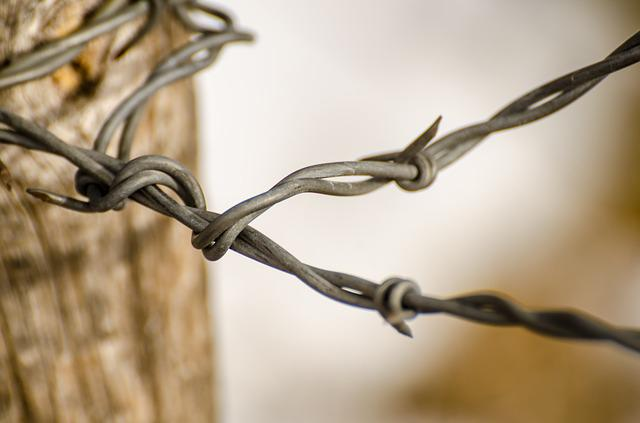 Wire, Fence, Barbed Wire, Ranch, Rustic, Barbed