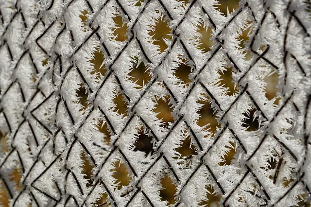 Fence, Hoarfrost, Wire Mesh Fence, Snow Crystals, Iced