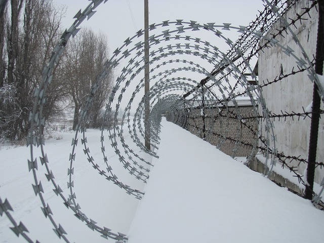 Barbed, Wire, Winter, Fence, Prison, War, Security
