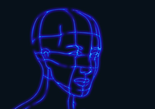 Head, Wireframe Graphics, Model, 3d, Human, Computer