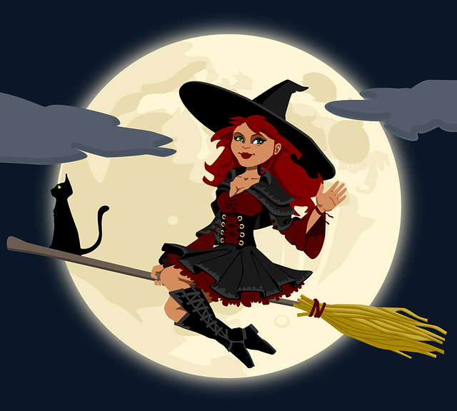 Witch, Witchcraft, Broomstick, Broom, Cat, Female
