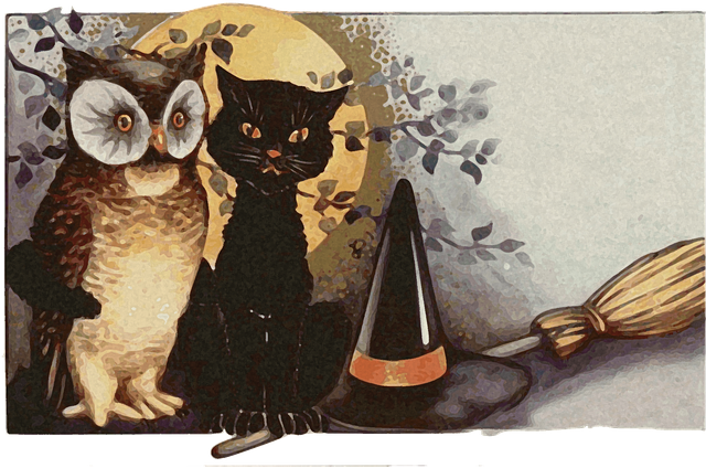 Owls, Night, Witch, Broom, Witch's Hat, Moon
