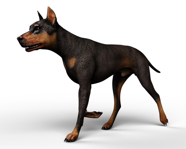Animal, Dog, Rendering, 3d, Without Background