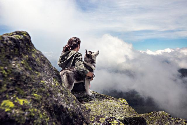 Sky, Woman, Clouds, Girl, Rocks, Mountain, Dog, Stones