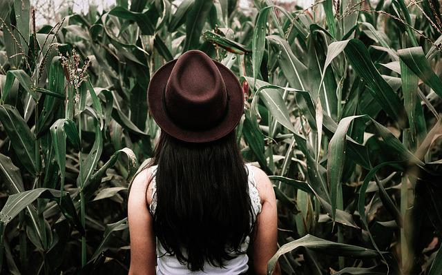 Field, Hat, Person, Woman
