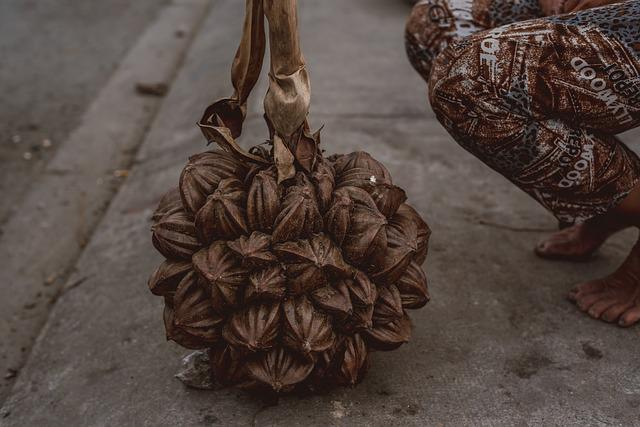 Nypa, Vietnam, Woman, Market, Seller, Asia, Fruit, Nut