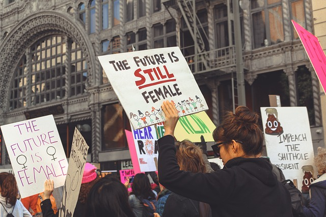 Free Photo Women S March Women 2018 Feminist Feminism